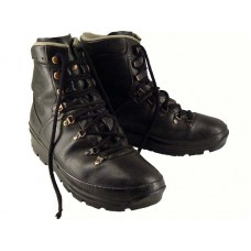 German Goretex Lowa Boot